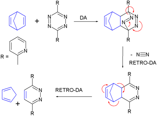 reaction of norbornadiene with 3,6-di-2-pyridyl-1,2,4,5-tetrazine