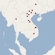 Distribution of Murina eleryi.png