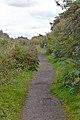 Ditton Lane, Moreton 4.jpg