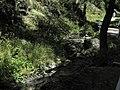 Divoká Šárka - panoramio (23).jpg