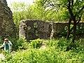 Dobrá Voda (TT), hrad (5).jpg