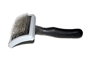 Coat (dog) - A slicker brush with wire bristles, used for removing loose hair from the coat.