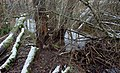 Dolina Pięciu Jezior tama bobrowa na Drawie 28.12.2019 p.jpg