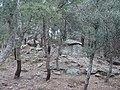 Dolmen de la Siureda - situation.JPG