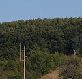 Donji Prekaz Kosova (3939871816).jpg
