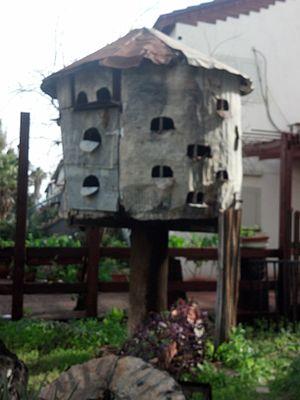 Dovecote - A dovecote at Mazkeret Batya, Israel