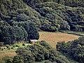 Dovey Junction - panoramio (10).jpg