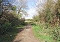 Downs Link Footpath - geograph.org.uk - 607932.jpg