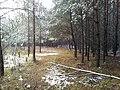 Dróżka - panoramio (4).jpg