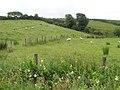 Drumnamarla Townland - geograph.org.uk - 1404820.jpg