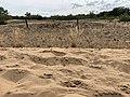 Dunes Charmes Sermoyer 22.jpg