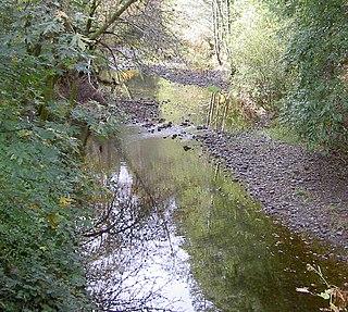 Dutch Bill Creek stream in Sonoma County, California