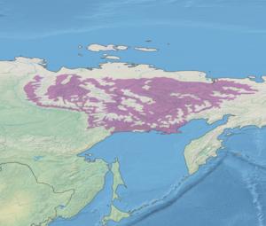 Northeast Siberian taiga - Image: Ecoregion PA0605