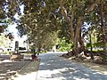 El jardin la floridablanca - panoramio.jpg
