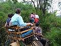 Elephant ride in Chiang Rai Province 2007-05 11.JPG