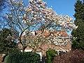 Elsrijk, 1181 Amstelveen, Netherlands - panoramio (47).jpg