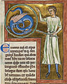 Emorroris royal MS12.jpg