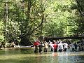 Encircling the fish (5574789052).jpg