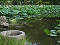 Enjo-ji Garden 03.jpg