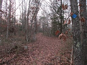 Entering Barnstable State Forest, Barnstable MA.jpg