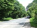 Epping New Road, Epping Forest - geograph.org.uk - 2523528.jpg