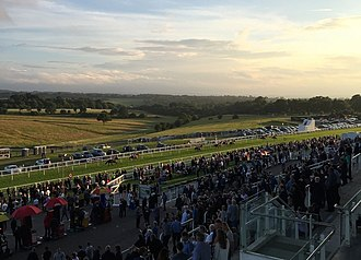 Epsom Downs Racecourse - Image: Epsom Downs finish line