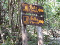 Erawan Waterfall Level 7 P1110172.JPG