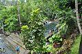Eriberta Resorts4.jpg