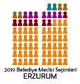Erzurum2019Meclis.png