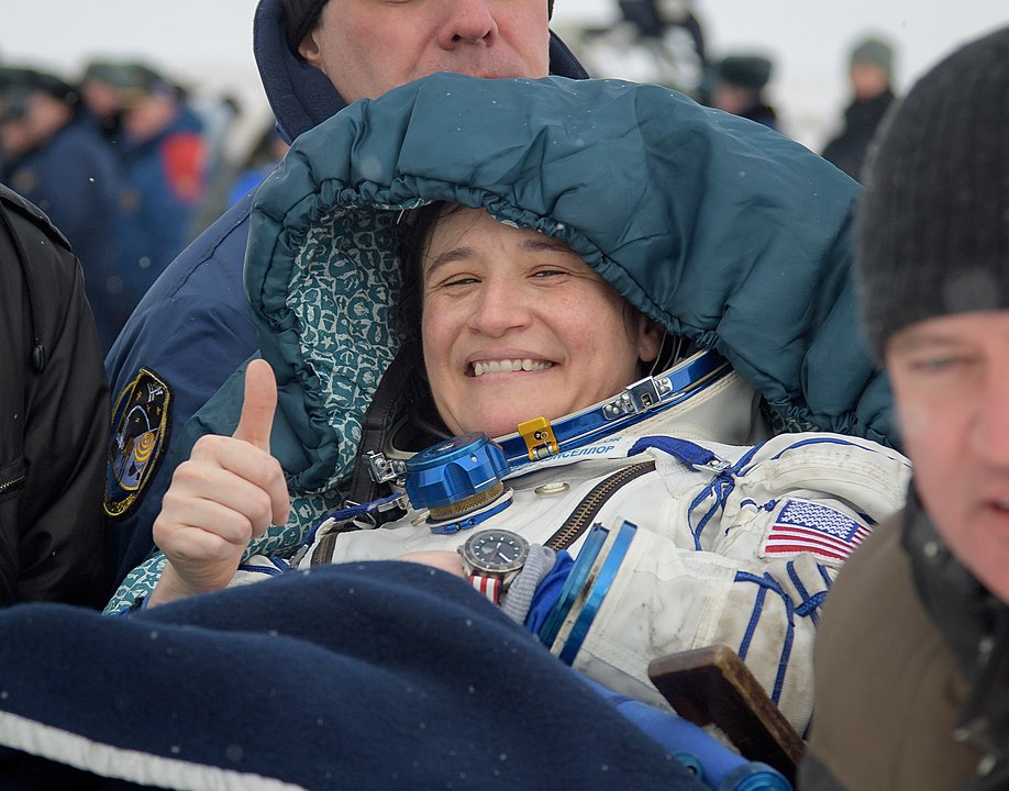 Expedition 57 Soyuz MS-09 Landing (NHQ201812200006).jpg
