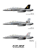 F18Dfamilyweb.jpg