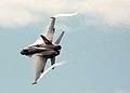 FA-18C vapor LEX and wingtip 1.jpg