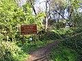 Fair Oaks, CA bluffs 999 - panoramio.jpg
