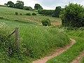 Farm track, Lea - geograph.org.uk - 444856.jpg