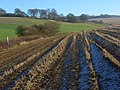 Farmland, Ewelme - geograph.org.uk - 1082236.jpg