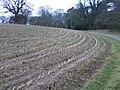 Farmland around Gwysaney - geograph.org.uk - 313261.jpg