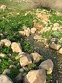 Fatzael Springs and water system 044.JPG