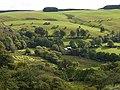 Fields around Blaen-Twrch farm - geograph.org.uk - 2081084.jpg