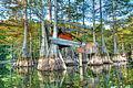 Finch Lake Abandoned Duck Blind (6014412675).jpg