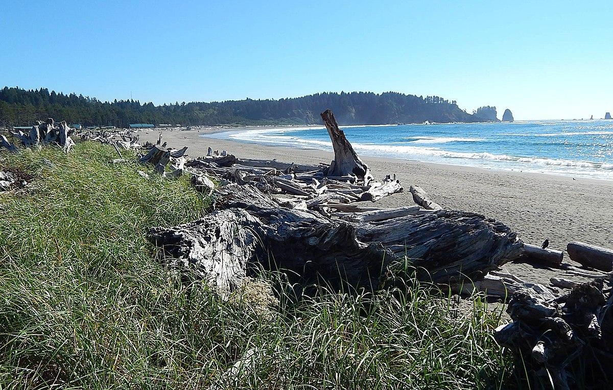 Beaches Near Pacific City Agates