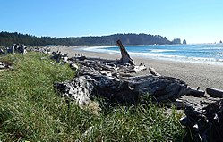 First Beach, La Push, Washington coast, Olympic National Park