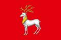 Flag of Rostov 02.png