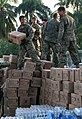 Flickr - DVIDSHUB - 22nd MEU Unloads Relief Supplies From a Helicopter in Petit Goave, Haiti Jan. 24..jpg