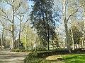 Florence Park (5986659431).jpg