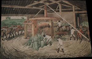 Hércules Florence - Sugar cane mill in São Carlos, 1840