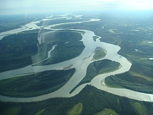 Flying over the meanders of the mighty Yukon to Arctic Village.jpg