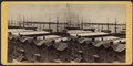 Foot of Montague Street, Brooklyn, Governor's Island in distance, from Robert N. Dennis collection of stereoscopic views.png