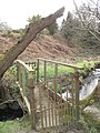 Footbridge over Afon Carrog - geograph.org.uk - 729321.jpg