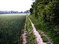Footpath Trottiscliffe - geograph.org.uk - 491318.jpg