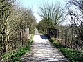 Footpath at Takeley Street - geograph.org.uk - 1194550.jpg